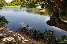 Lago da Princesa – Ilha de Algodoal | Foto: Carlos Macapuna