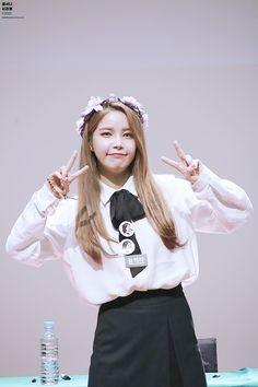 161117 인천 팬싸인회 솔라