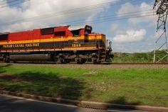Train speeding past in Panama
