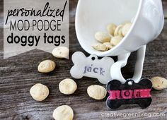 How to Make a Personalized Pet Tag for Your Dog or Cat ~ Creative Green Living