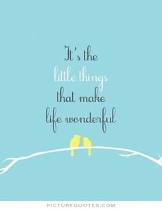 It's the little things that make life wonderful. Picture Quotes.