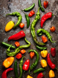 FOOD: Peppers by Leslie Grow, via Behance