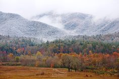 After the snowfall, we faced the traffic and ventured back into Cades Cove. The going was slow, but the view was worth it. This photo captures the fall color in the valley, the snowfall on the mountains, and even glimpses the transition line between the two.
