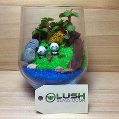 Customized Cute Panda Themed Succulents Terrarium by Lush Glass Door Singapore
