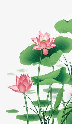 Lotus Vector, Lotus Leaf, Hawthorn, Flower PNG and Vector Lotus Flower Pictures, Lotus Flower Art, Lotus Art, Flower Images, Pink Lotus, Watercolor Lotus, Lotus Painting, Art Painting Gallery, Mural Painting
