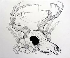 I drew a similar picture for my cousin, who had an idea for a tattoo design. Then I drew this, and will probably do more animal skulls. Deer Skull and Flowers Deer Skull Art, Skull Artwork, Animal Skull Drawing, Animal Skulls, Skull Sketch, Art Alevel, Cute Coloring Pages, Plant Drawing, Flower Skull