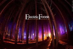 Electric Forest Festival Rothbury | Electric Forest Festival Comes to Rothbury, Mi July 4th Weekend ...