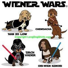 Weenie Dogs, Dachshund Puppies, Pet Dogs, Dogs And Puppies, Dog Cat, Daschund, Doggies, Dachshund Art, Funny Dachshund