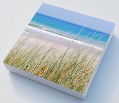 Beach grass photo blocks x 3 beach art  home decor by NewCreatioNZ, $30.00