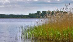 Jezioro w Chmielnikach, plaża w Chmielnikach, 13km od osiedla Avia w Bydgoszczy Vineyard, Mountains, Nature, Travel, Outdoor, Outdoors, Naturaleza, Viajes, Vine Yard