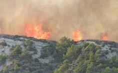 Σε εξέλιξη πυρκαγιά στην περιοχή Μπόρσι Ανδραβίδας στην Ηλεία