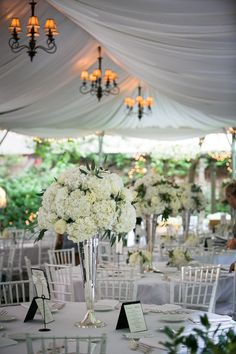 Tented green and white elegance. Photography by mkphoto.com, Wedding Planning by qohweddings.com