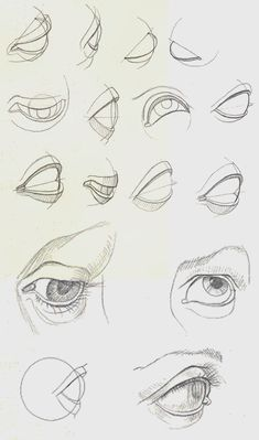 Amazing Learn To Draw Eyes Ideas. Astounding Learn To Draw Eyes Ideas. Eye Anatomy, Human Anatomy Drawing, Anatomy Art, Human Eye Drawing, Anatomy Sketches, Art Drawings Sketches, Eye Drawings, Art Illustrations, Pencil Drawings