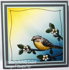 Soaking Up the Sunshine Stampin' Up! Card created by Michelle Zindorf using Best Birds Stamp set.