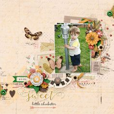 Pretty As a Picture - Meghan Mullens and Studio Basic Designs