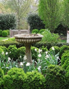 Tone on Tone: Our Early Spring Garden; beautiful antique birdbath Tone on Tone: Our Early Spring Garden; Formal Gardens, Outdoor Gardens, The Secret Garden, Secret Gardens, Design Jardin, Garden Cottage, Garden Beds, Tuscan Garden, Fence Garden