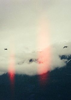 clouds & birds