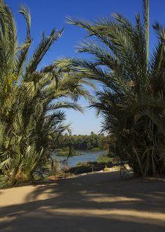 Nile River Bank, Tumbus, Sudan