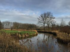 Langs de Dommel. #Eindhoven #EindhovenNoord #walk #Dommel