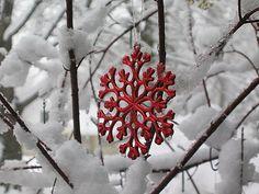 *winter serenade*
