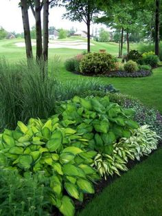 Designing a Garden With Landscape Design Principles 29