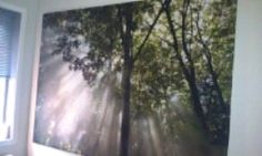 bildet på soveromsveggen min