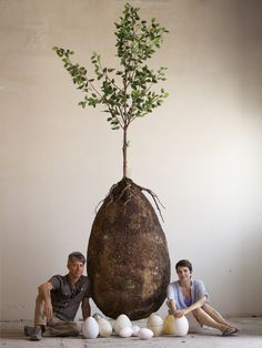 Two designers want to turn your body into a tree with these eco burial pods So beautiful! This would express my spiritual desires when I go- and legalities should not stand in the way of nature.