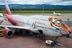 Rossiya Boeing 747-400 Endangered Siberian Tiger livery