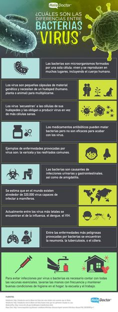 Cuáles son las diferencias entre virus y bacterias - HolaDoctor Ap Biology, Science Biology, Medical Science, Medicine Notes, Medicine Student, Health And Beauty, Health And Wellness, Med Student, Veterinary Medicine