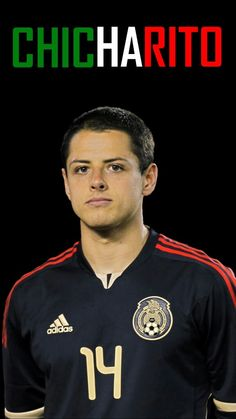 World Cup 2014: Javier Hernandez  (Chicharito)