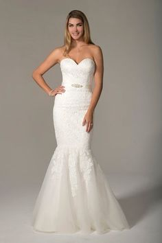 Mermaid-style wedding dress idea - lace wedding dress with strapless neckline and a satin ribbon. VN6944 by Venus Bridal. See more wedding dress inspiration on WeddingWire!