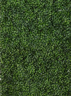Green faux boxwood plastic mat retail store window display props spring summer grass wedding ceremony backdrop DIY bride groom tv set stage movies