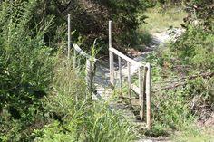 Bridge to somewhere...