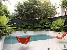 Cooling effect with tropical leafy foliage.