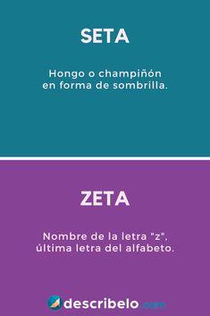 Las palabras seta y zeta suenan parecido, pero significan cosas distintas. Mira ejemplos fáciles en el enlace del pin.   #ortografía #español #homófonas