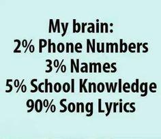 My Brain Percentages