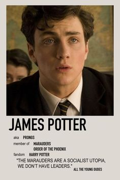 James Potter Minimalist Poster
