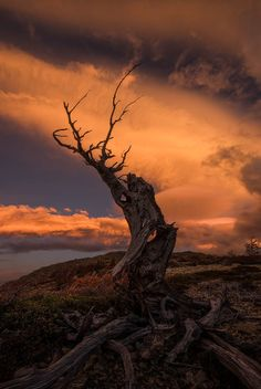 Liberating from Samsara by Artur Stanisz on 500px