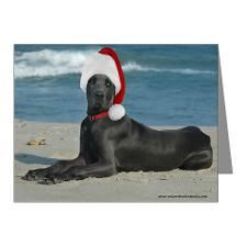 love DOGS, especially the big ones! on Pinterest | Great Danes ...