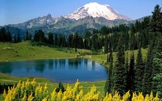 Image result for altai mountains