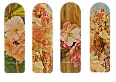 Cherry Blossom Photography Printable Bookmarks | Craftsy