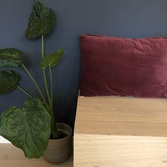 Trapp med forlengelse som gir mulighet for en sitteplass! Plant Leaves, New Homes, Plants, House, Home, Plant, Homes, Planets, Houses