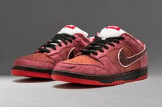 077000231eec0 nike sb dunk low red lobster sneaker talk Sneaker Bar