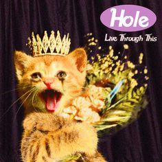 18 Iconic Albums With Kittens On The Cover - Kerrang!