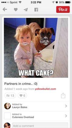 Partner in crime.  Lol.