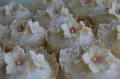 Novelli Cupcakes