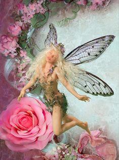 Happy Fairy by Patricia Rose Studio