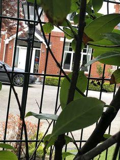 Terrarium, Windows, Plants, Home Decor, Terrariums, Decoration Home, Room Decor, Plant, Home Interior Design