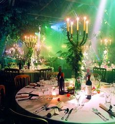Want to come to my party? We shall wine and dine and dance the night away. Looks magical...