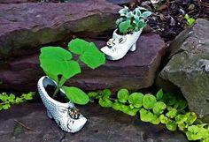 Ask Holly: Storybook Gardening